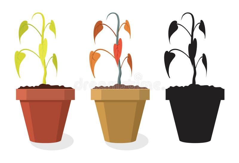 Sistema del vector de plantas caseras de muerte libre illustration