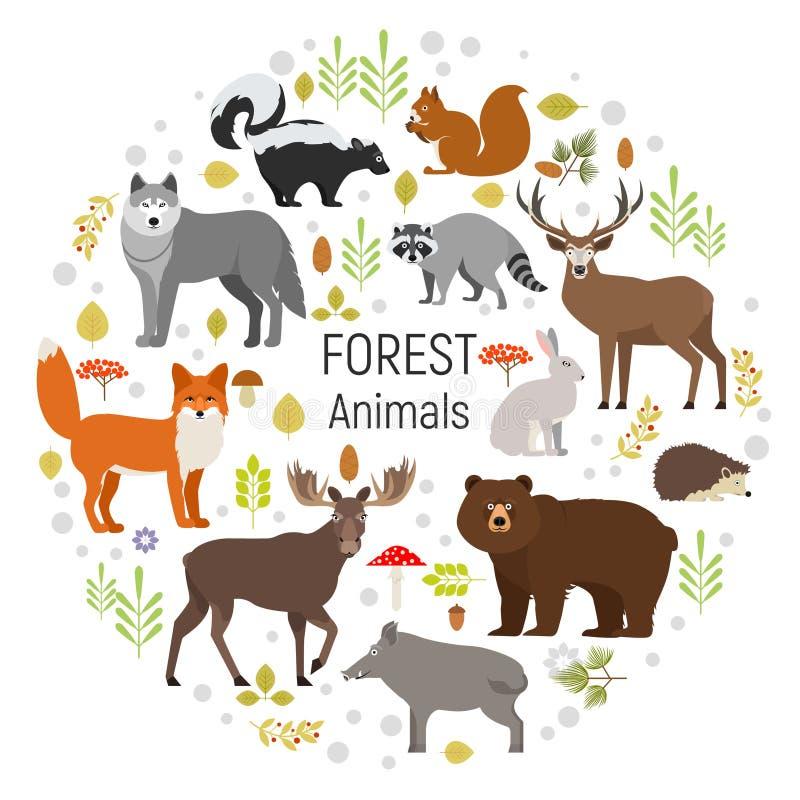 Sistema del vector del círculo de plantas y de animales del bosque ilustración del vector