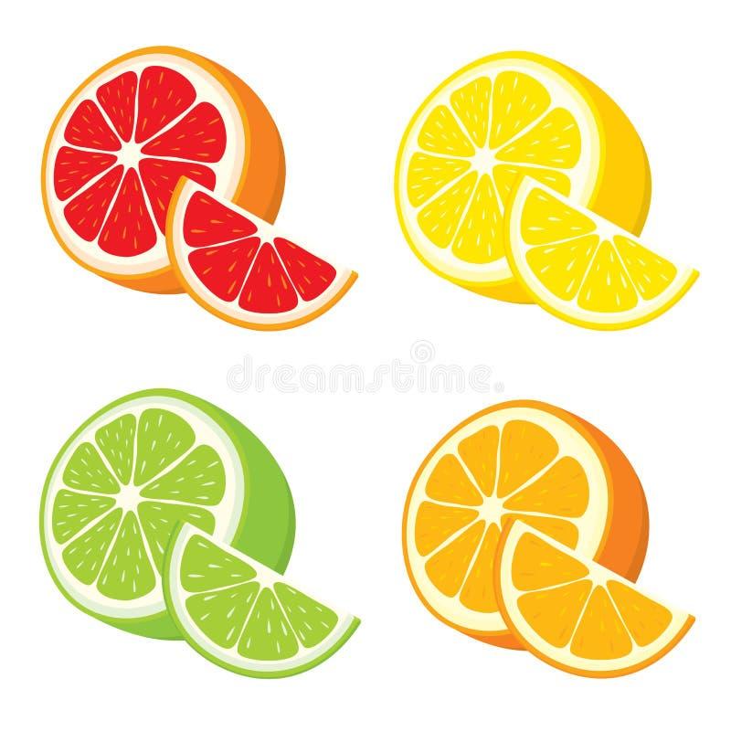 Sistema Del Vector Del Limón, Naranja, Cal, Rebanadas Del Pomelo ...