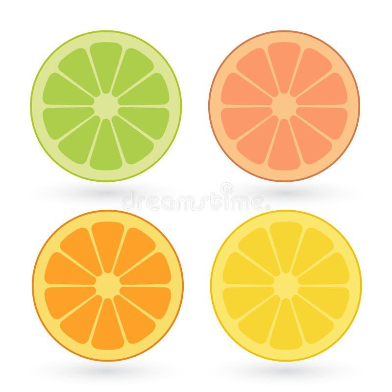Sistema del vector del limón, naranja, cal, rebanadas del pomelo aisladas en el fondo blanco ilustración del vector