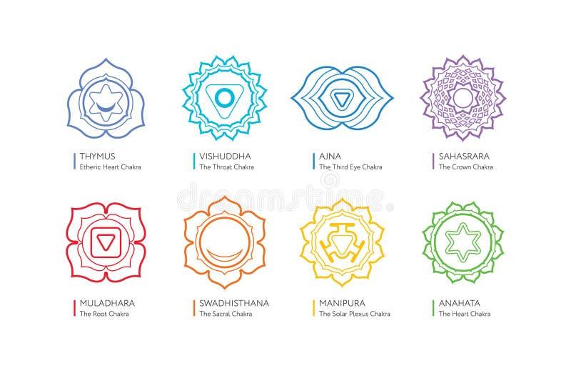Sistema di Chakras del corpo umano - utilizzato nel Hinduismo, nel buddismo, nell'yoga e in Ayurveda illustrazione vettoriale