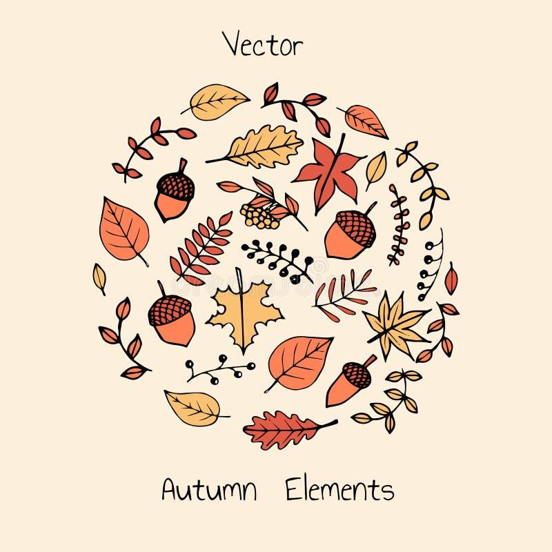 Sistema dibujado mano colorida del vector de hojas de otoño, de akorns y de bayas stock de ilustración