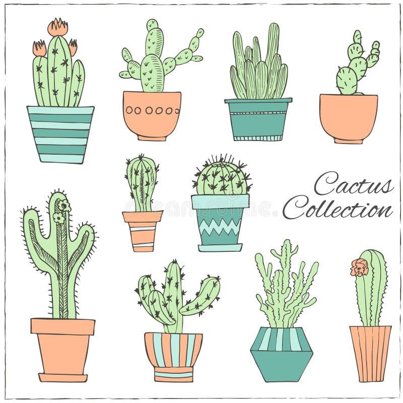 Sistema dibujado mano del cactus en los potes ilustración del vector