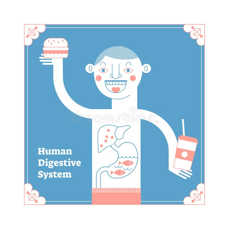 Sistema digestivo humano estilizado, ilustração anatômica do vetor, cartaz decorativo conceptual, alimento e trato digestivo da a ilustração royalty free