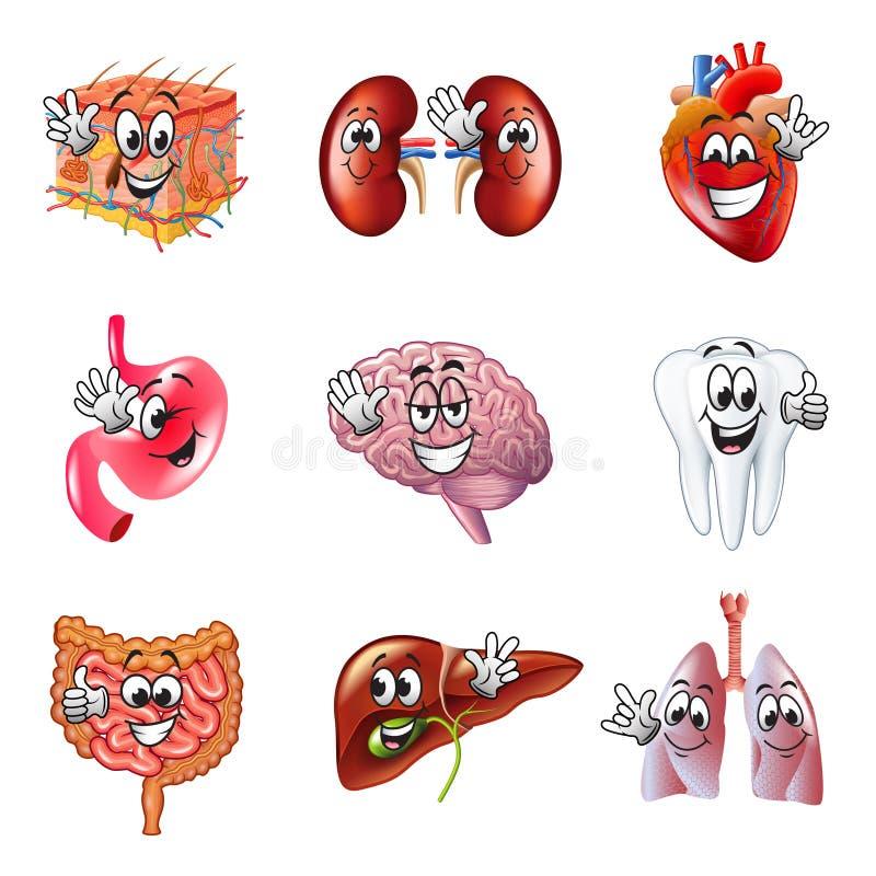 Sistema divertido del vector de los iconos de los órganos humanos de la historieta stock de ilustración