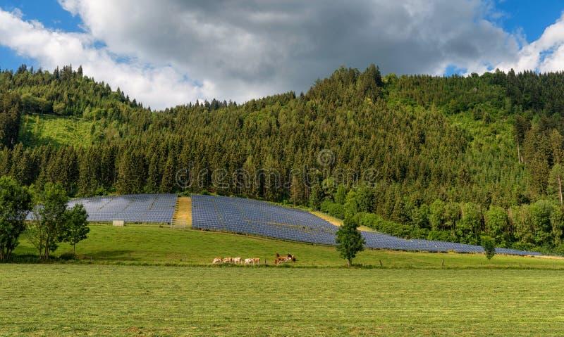 Sistema eléctrico del panel solar en un campo por el bosque imagenes de archivo