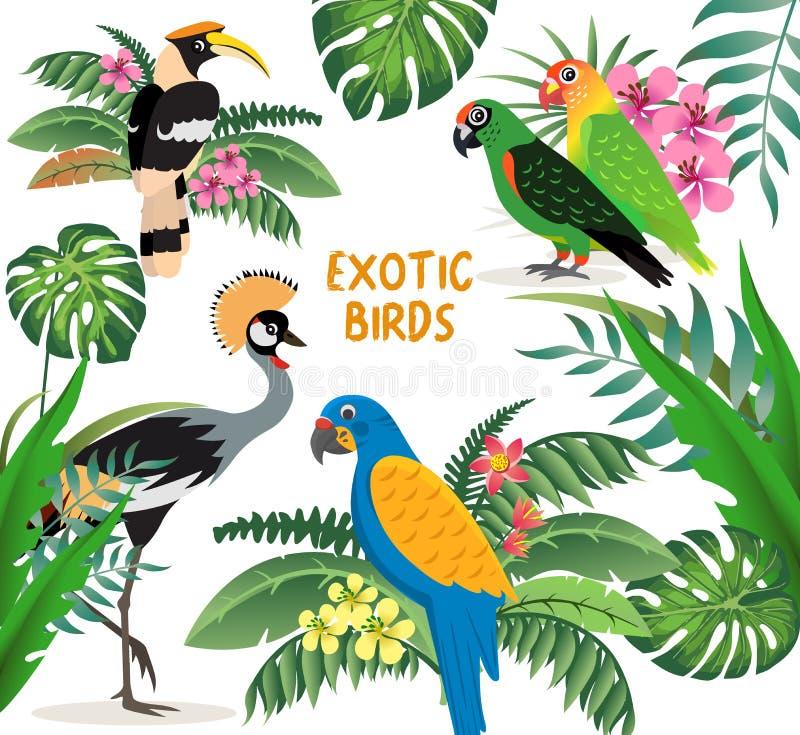 Sistema exótico de los pájaros, grúa coronada, cotorras rizadas de los loros y azul coloridos con el macaw amarillo de las alas,  ilustración del vector