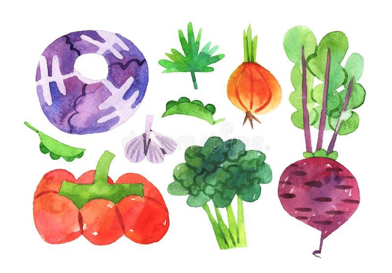 Sistema exhausto de la mano con la colección de las verduras de la acuarela stock de ilustración