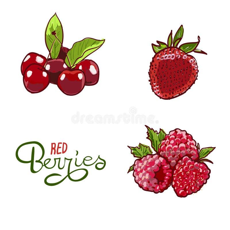 Sistema exhausto del vector de Berry Hand Ejemplo colorido del marcador de la baya Bayas que graban la l?nea del bosquejo del gar stock de ilustración