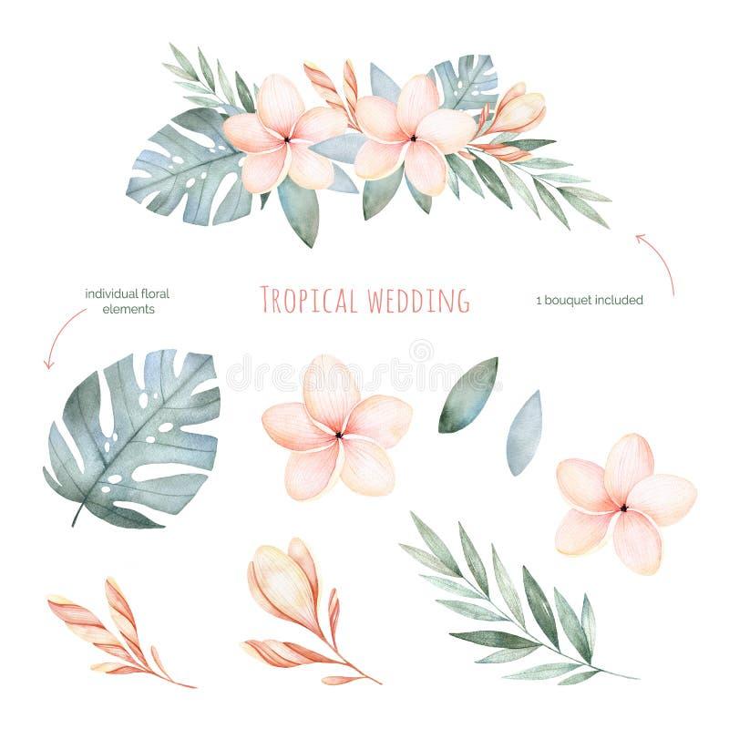 Sistema floral de la boda tropical stock de ilustración