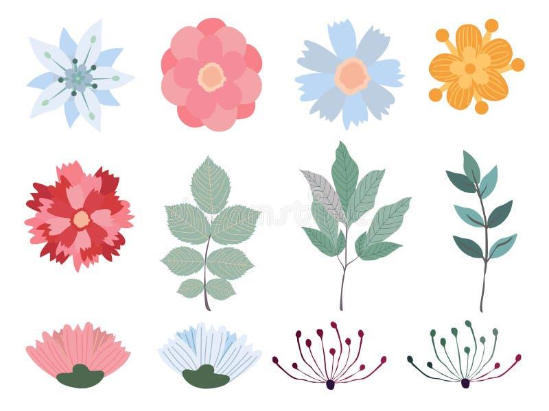 Sistema floral del vector Colección floral colorida con las flores Conjunto de elementos florales Ilustración del vector libre illustration