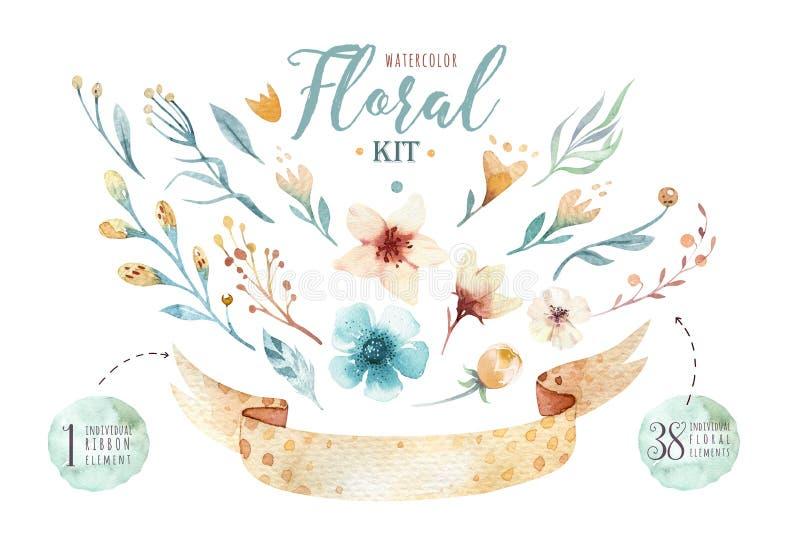 Sistema floral vibrante dibujado mano de las pinturas de la acuarela Alas color de rosa del estilo de Boho Ilustración aislada en ilustración del vector