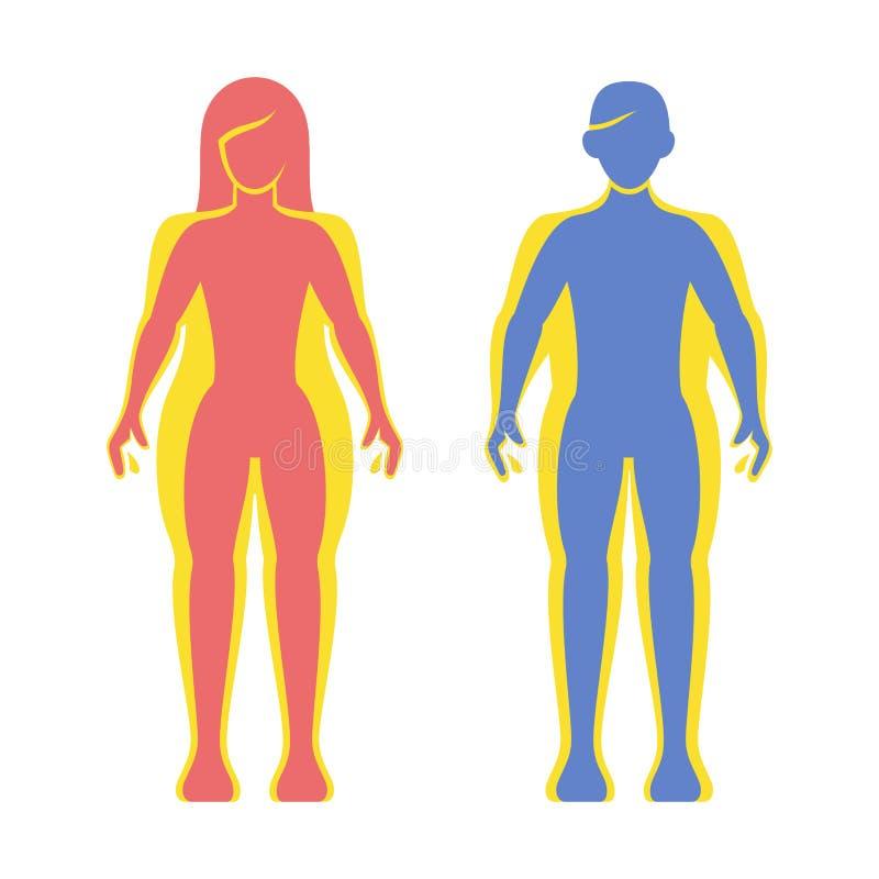 Sistema gordo y delgado de la silueta del hombre y de las mujeres Vector stock de ilustración