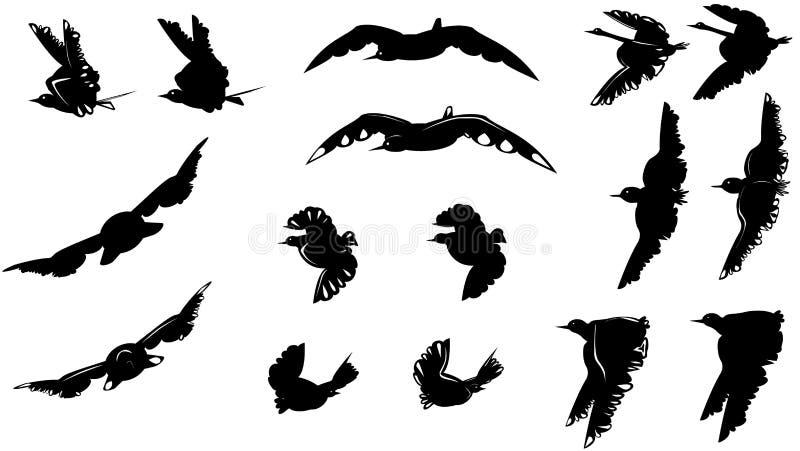 Sistema grande de diversas siluetas blancos y negros de los pájaros stock de ilustración