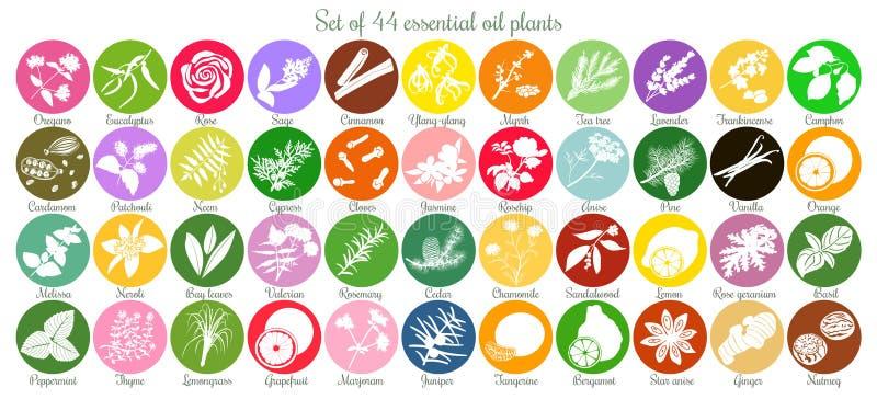 Sistema grande de 44 etiquetas planas del aceite esencial Siluetas blancas ilustración del vector
