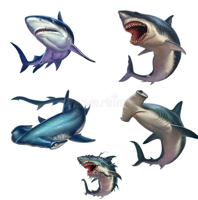 Sistema grande del ejemplo realista aislado tiburones ilustración del vector