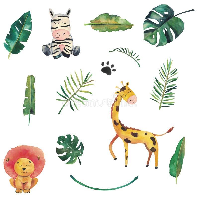 Sistema Handdrawn de la selva de la acuarela Hojas tropicales, león, cebra, jirafa libre illustration