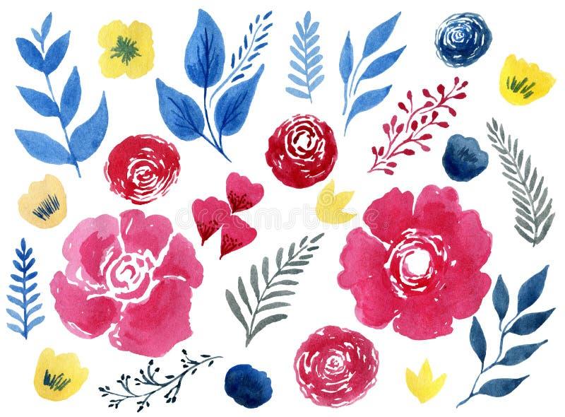 Sistema hermoso de la flor de la acuarela sobre el fondo blanco para el diseño stock de ilustración