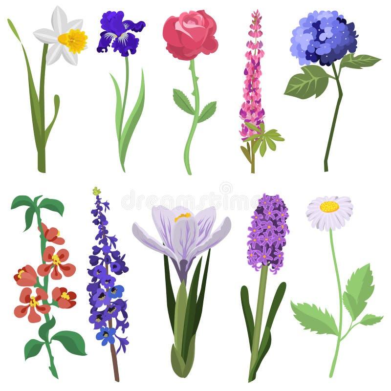 Sistema hermoso de la flor de la acuarela stock de ilustración
