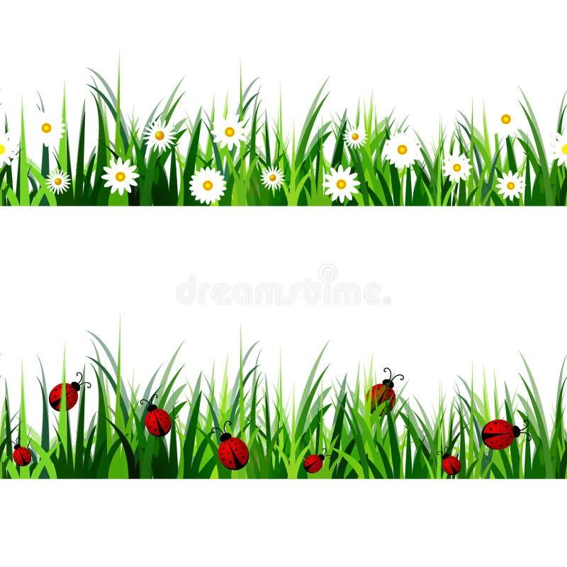 Sistema inconsútil de la hierba verde stock de ilustración