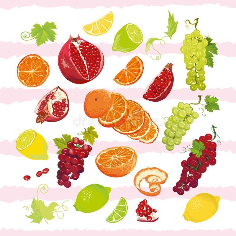 Sistema jugoso brillante del diseño del vector de las frutas libre illustration