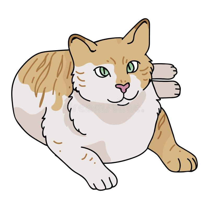 Sistema lindo del adorno del ejemplo del vector de la historieta del gato de casa Mano drenada aislada libre illustration
