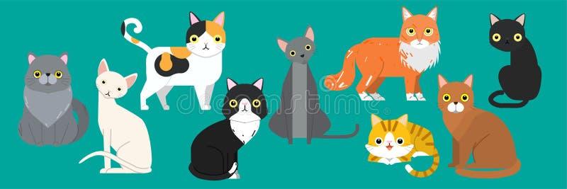 Sistema lindo del animal de animal doméstico de la historieta de los gatos razas divertidas de los caracteres de diversas stock de ilustración
