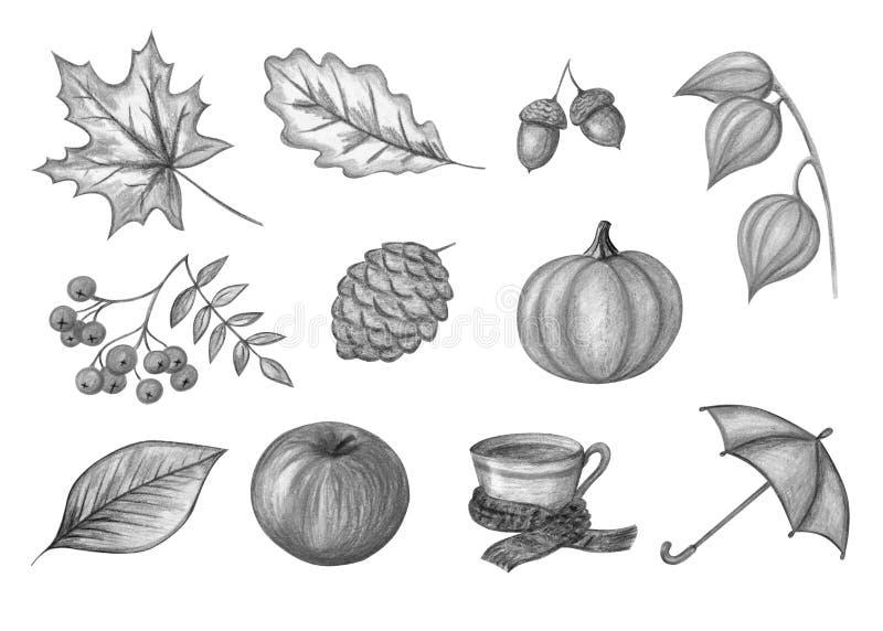 Sistema monocromático del otoño stock de ilustración