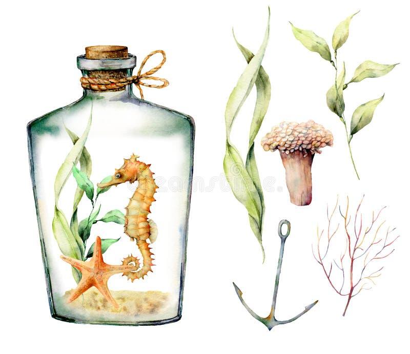 Sistema náutico de la acuarela con los animales, las plantas, los pescados y el ancla coralinos Ramas subacuáticas pintadas a man imagenes de archivo