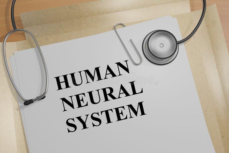 Sistema neurale umano - concetto medico illustrazione vettoriale