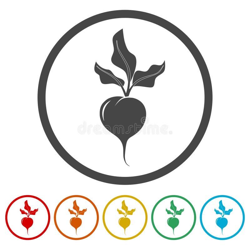 Sistema plano del diseño, linear y del color de las remolachas de los iconos stock de ilustración