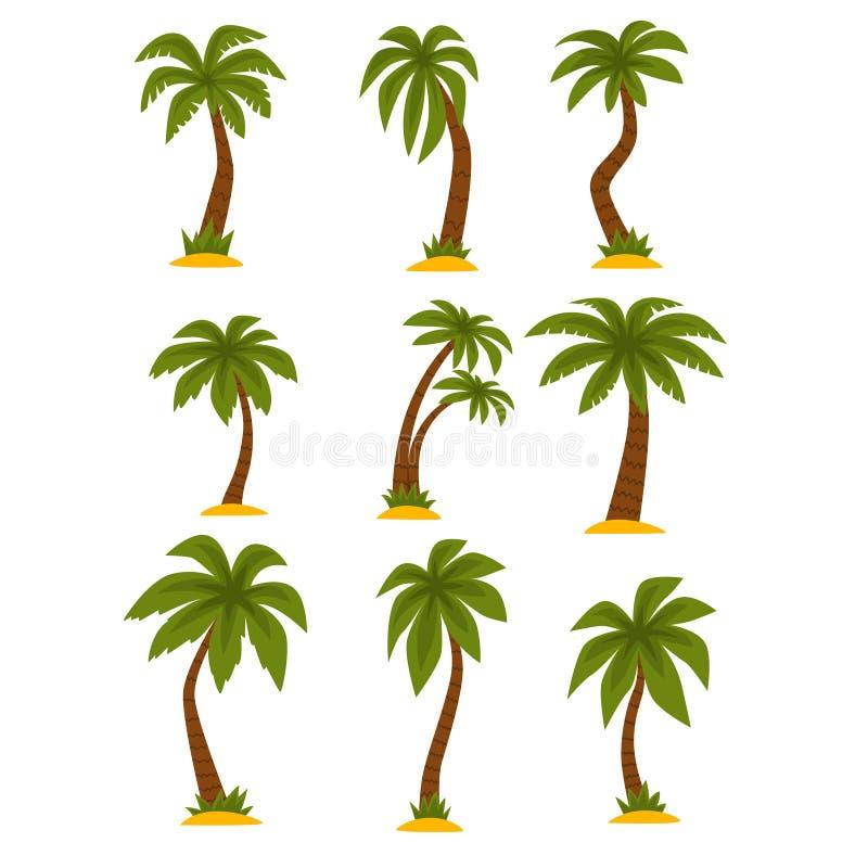 Sistema plano del vector de palmas tropicales de la historieta Altos árboles con las hojas del verde largo y los troncos marrones stock de ilustración
