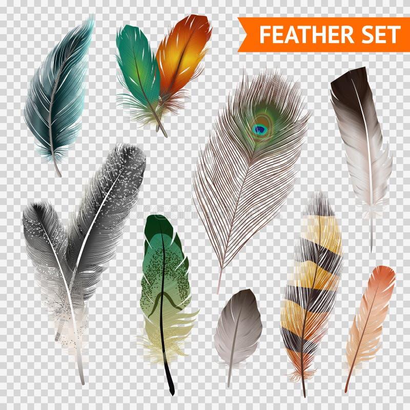 Sistema realista de las plumas ilustración del vector