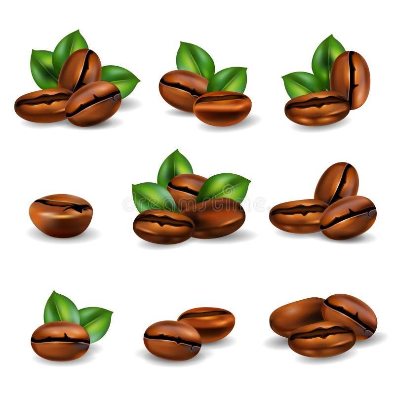Sistema realista de los granos de café libre illustration