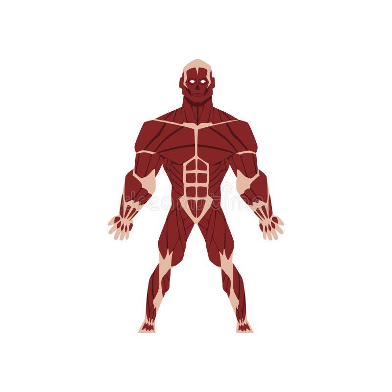 Sistema scheletrico biologico umano, anatomia dell'illustrazione di vettore del corpo umano su un fondo bianco illustrazione vettoriale