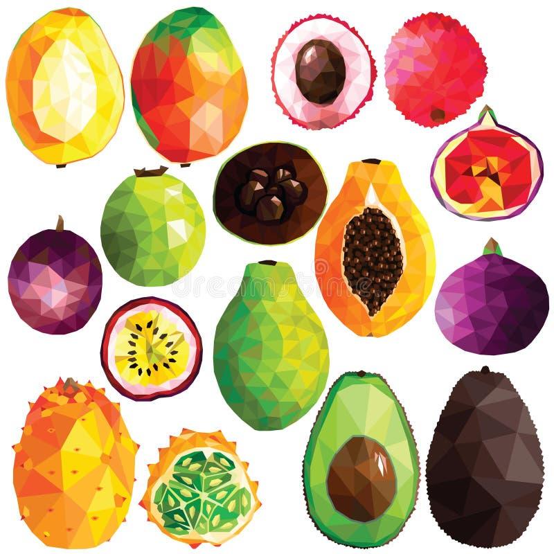Sistema tropical de la fruta libre illustration