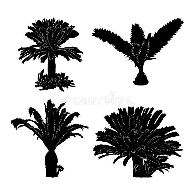 Sistema tropical de las palmeras de la silueta negra en el fondo blanco ilustración del vector
