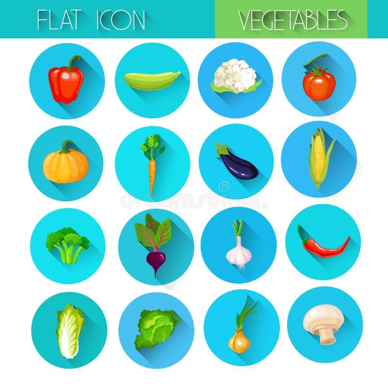 Sistema vegetal del icono de la colección colorida stock de ilustración