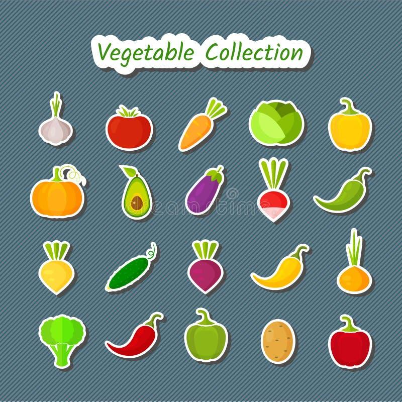 Sistema vegetal del icono del diseño lindo de remiendos aislados libre illustration