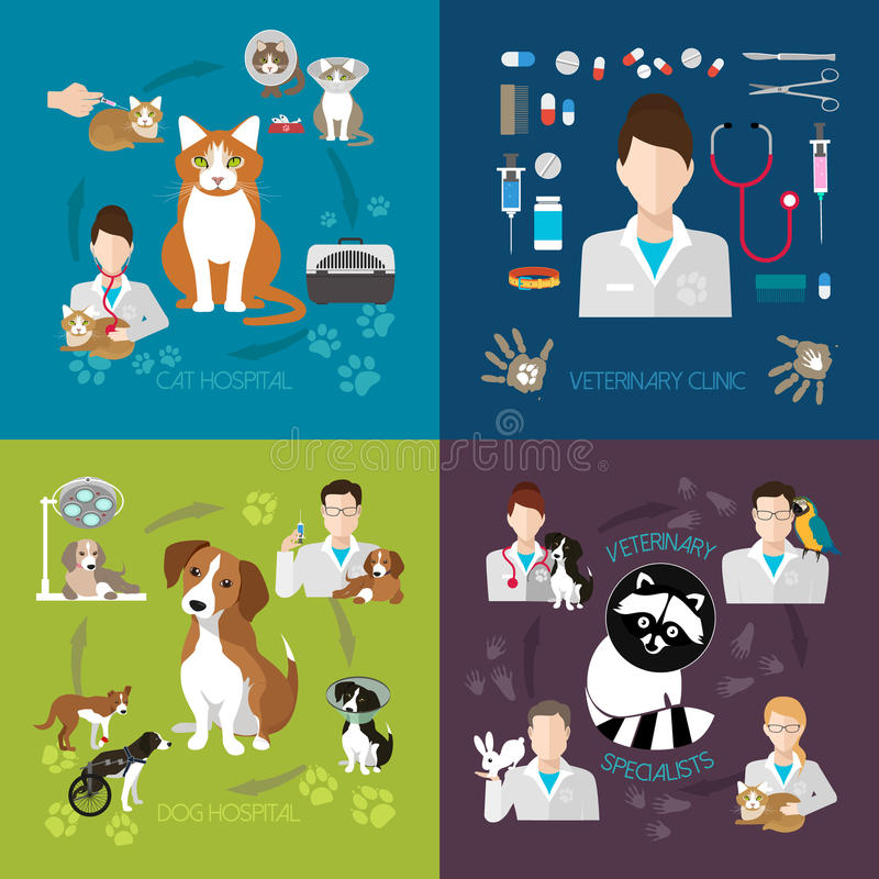 Sistema veterinario del plano con la clínica de la medicina del hospital del gato y del perro aislada en fondo libre illustration
