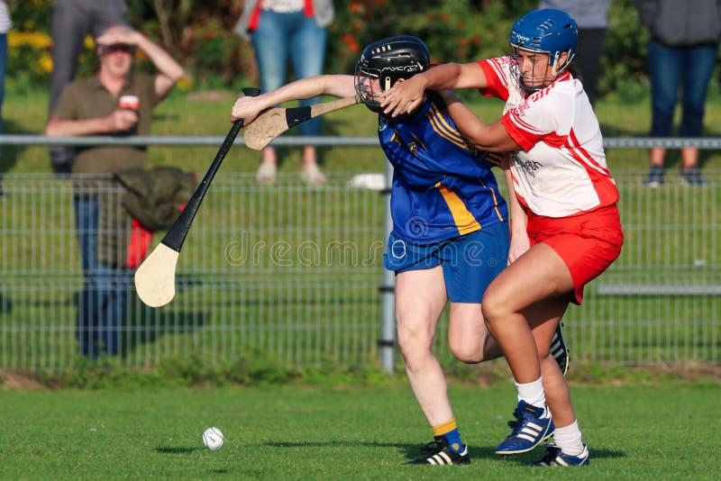 Sistemas Cork Camogie Senior Club Championship do SE: St Finbarrs v Ballygarvan fotografia de stock