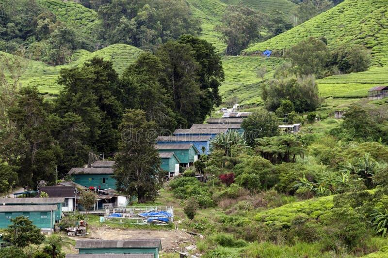 Sistemazione sulla proprietà del tè di Sungai Palas Boh in Cameron Highlands, Malesia del ` dei lavoratori fotografia stock libera da diritti