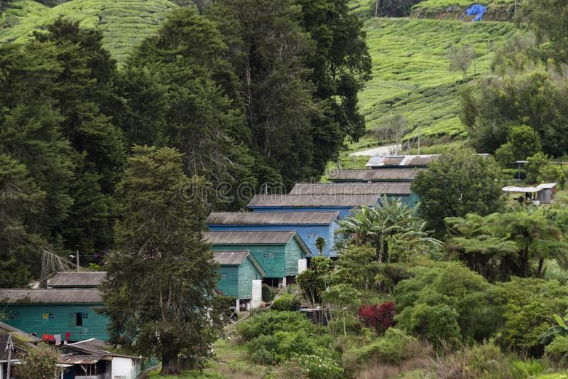 Sistemazione sulla proprietà del tè di Sungai Palas Boh in Cameron Highlands, Malesia del ` dei lavoratori fotografie stock libere da diritti