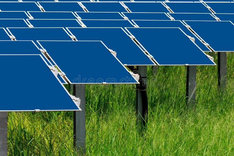 Sistemi con molte pile solari su erba verde fotografia stock