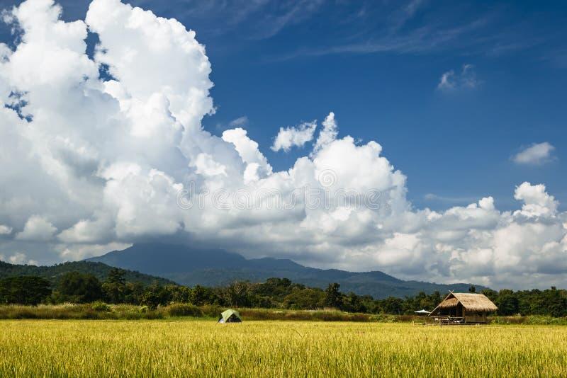 Sistemi in Tailandia con costruzione di bambù ed il grande cielo in Chiang Mai immagini stock libere da diritti