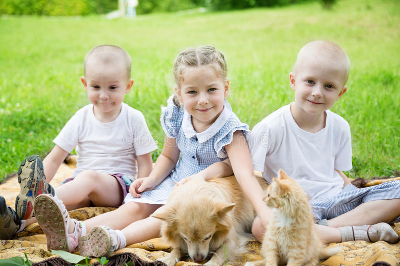 Sister with brothers with a cat and a dog. In the park royalty free stock photos