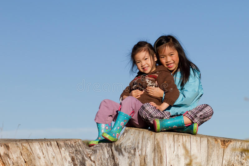 Download Sisters stock photo. Image of stump, girls, love, sunny - 16535370
