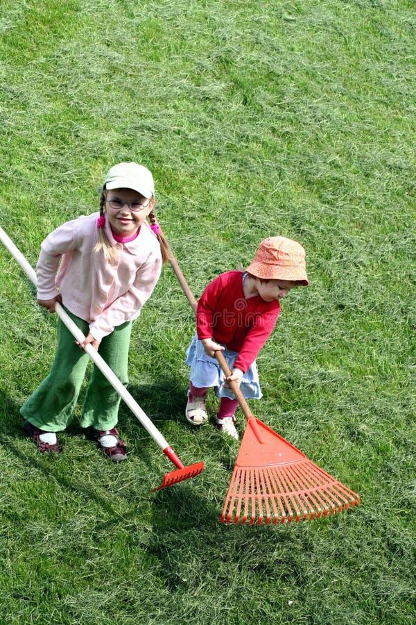 Sisters raking up the cut grass stock photo