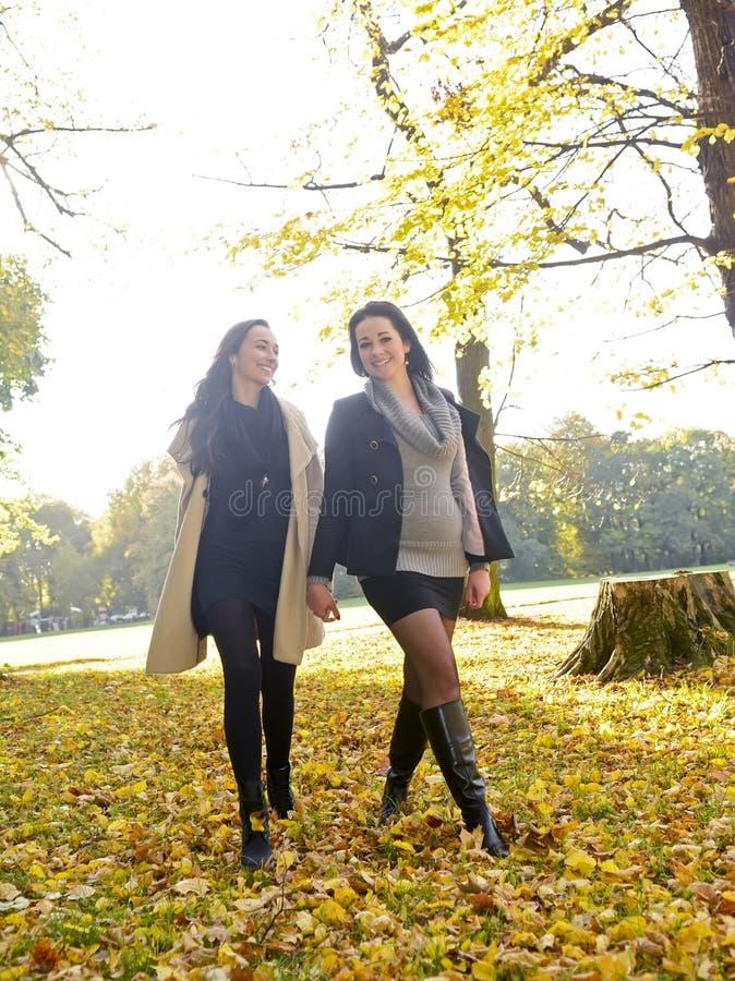 Sisters walking royalty free stock photos