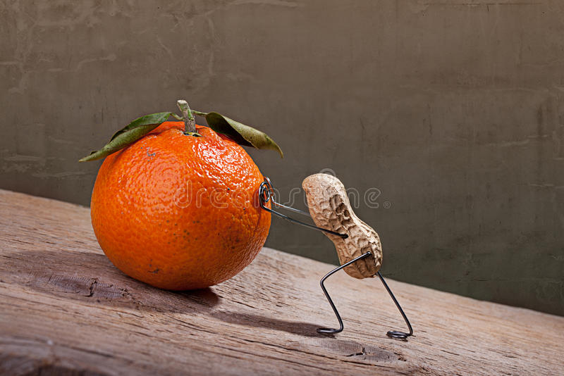 Download Sisyphus stock image. Image of funny, juicy, moving, mandarin - 22729069